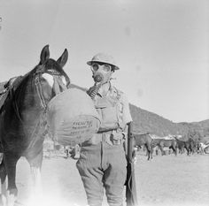 "A trooper and his horse from the TransJordan Frontier Force Cavalry Regiment with anti-gas respirators fitted in the ""ready"" position. Photograph taken at Hamboughi on the Latakia-Aleppo road in Syria."