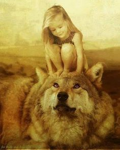 Grande Lobo - Comunidade - Google+