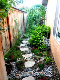 Narrow Side Yard Landscaping Ideas | Narrow side yard, stepping stones and decorative drainage
