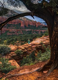 Devil's Bridge in Sedona, Arizona is quite possibly the most featured attraction, with a mass of hikers and jeep tours visiting it daily. Here's how we got Devil's Bridge all to ourselves. Visit Sedona, Sedona Arizona, Us Travel, Devil, Beats, Crowd, Grand Canyon, Travel Photography, Bridge