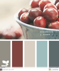 Color Palettes. I miss the red color in the scheme.