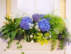 Arrange your hanging vases or mini garden similar to how gift boxes or gift baskets are designed. In this case, the leafy plants serve as the ornate wrappings while the hydrangea stand out as the gift. Hydrangea Potted, Hydrangea Flower, Flower Garden Images, Side Yard Landscaping, Leafy Plants, Flowering Plants, Preserved Boxwood, Garden Stairs, Path Ideas