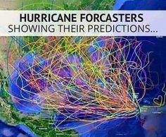 Hurricane Memes for Floridians - 20 Pics – Funnyfoto - Page 10 Hurricane Memes, Hurricane Party, North Carolina Hurricanes, Funny Texts, Funny Jokes, Funny Captions, Florida Funny, Florida Humor, Florida Girl