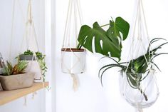 Creating personal touches for your home with your own hands Plant Hanger, Hands, Magazine, Create, Magazines
