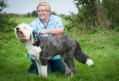 About - IW Grooming Shed - The Isle of Wight Dog Groomer