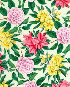 Blossom - Floral Extravaganza - Cream