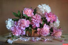 Alla Shevchenko - panier de fleurs