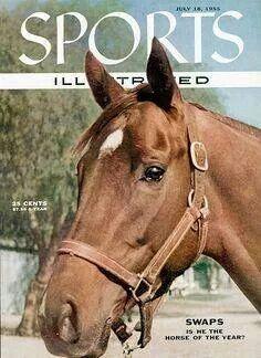 Swaps -  A wonderful California based horse who made history