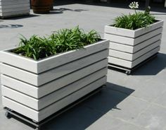 concrete planters on wheels - Google Search