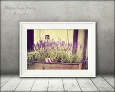 Lavender for Sale Flower Photography by MelissaReesePeterson