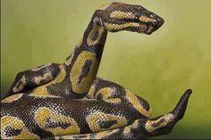 Hand Art - snake