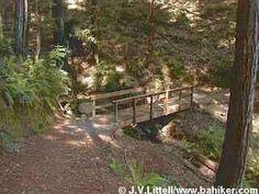 Woods Loop, Huddart County Park,  San Mateo County Parks,  San Mateo County  4.4 mile loop