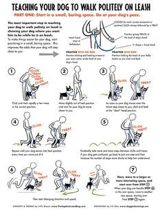 TEACHING YOUR DOG TO WALK POLITELY ON LEASH Published in EveryDog Magazine, Spring issue 2012 A collaboration with Irith Bloom www.TheSophisticatedDog.com Starring Boogie, the boston terrier. To view or download larger size: www.flickr.com/photos/lilita/6881499446/sizes/in/photostr... See more at www.doggiedrawings.net/dogtraining PART 2 --> www.flickr.com/photos/lilita/7793628388/