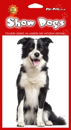 Border Collie - These double-sided dog stickers are suitable for adhesion to any smooth non-porous surfaces such as car or house windows, refrigerators, furniture and doors.Available at www.car-pets.co.uk