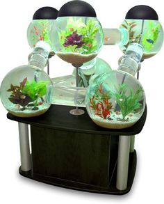 Finally! A use for that TV stand!  I need something like this but bigger....and for my cats.    Labyrinth Aquarium - Opulentitems.com