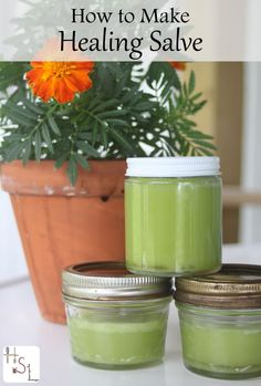 Use this quick and easy method to make healing salve from local and seasonal herbs.: