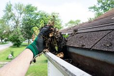Roof Cleaning, Gutter Cleaning, Cleaning Tips, Rain Gutter Installation, How To Install Gutters, Roofing Services, Lawn Maintenance, Pressure Washing, Window Cleaner
