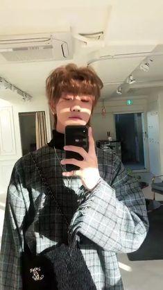 Dino Seventeen, Seventeen Memes, Mingyu Seventeen, Seventeen Instagram, 17 Kpop, Seventeen Minghao, Ulzzang Korean Girl, Funny Kpop Memes, Mullets