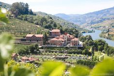 Europe's most underrated travel destination! The Douro Valley in Portugal has everything a summer trip needs, only without all the crowds. The Six Senses Douro Valley hotel is a great place to stay while there. Hotel Portugal, Douro Portugal, Spain And Portugal, Portugal Travel, Portugal Destinations, Travel Destinations, The Places Youll Go, Great Places, Amazing Places