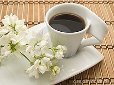 """""""Live on coffee and flowers. Try not to worry what the weather will be."""" (Matt Berninger)"""