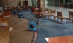 Follow Best Method for Drying Wet Carpet