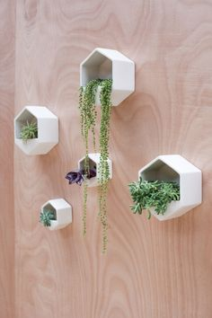 Hexagon Wall Planter Black More