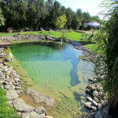 Natural Swimming Pool: Most Beautiful Ideas to Inspire You Swimming Pool Pond, Natural Swimming Ponds, Natural Pond, Swimming Pool Designs, Ponds Backyard, Backyard Landscaping, Round Pool, Pond Design, Beautiful Pools