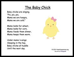The Baby Chick