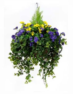 Outdoor Plants Large Red Flowers | artificial hanging basket large size approximate width 65cm a large ...