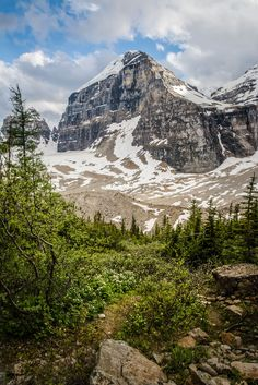This is Mount Lefroy - at least, I think it is! (Please correct me if I'm wrong!)   It's one of the mountains we came across while walking the Plain of Six Glaciers Trail near Lake Louise. It's a beautiful hike. We had tea at the St Agnes Tea House as it was late in the day but the tea house at the top of the Six Glaciers trail was a lot nicer.  I'll have to go there next time!  I'd highly recommend this hike.