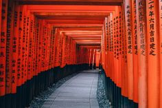 Fushimi Inari-taisha Shinto Shrine Osaka orange black www.fromlusttilldawn.com lust 'till dawn traveling to japan for the first time