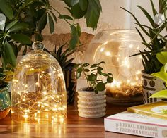 Firefly Battery Powered String Lights for the inside of my holiday craft wine bottles- Urban Outfitters Battery Powered String Lights, Starry String Lights, Balcony Lighting, Outdoor Lighting, Cool Apartments, Home Living, Living Room, My New Room, Fairy Lights