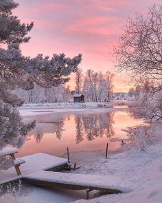 Нежно- розовое утро.  Зима | Рассвет | Снег | Вода