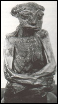 morticom weird anomalies and fossils:  In Casper, Wyoming, USA, in 1932, a mummy was discovered in a small cave by gold prospectors. The mummy was an adult male, only 14 inches tall, his hands had been folded onto his lap and he was found sitting in a cross-legged position. He appeared to be middle age, his skin brown and wrinkled, flat nose, low forehead with a broad mouth and thin lips. The mummy eventually disappeared after being shown in side-shows for many years.