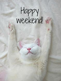 Happy weekend! Have a great day!♥