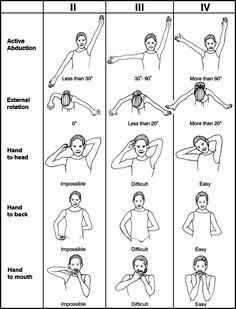 Brachial Plexus exercises
