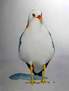 "watercolor bird painting bird art original watercolor Seagull ""Tails"" by Betty Moore by bMoorearts on Etsy"
