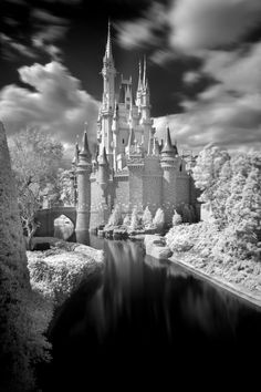 by Kent Phillips, Photographer, Walt Disney World