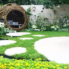 City twitchers garden
