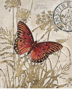 Chad Barrett Posters, Prints, Paintings & Wall Art for Sale Butterfly Wall Art, Butterfly Frame, Butterfly Wallpaper, Butterfly Print, Vintage Birds, Vintage Postcards, Chad Barrett, Hand Art, Decoupage Paper