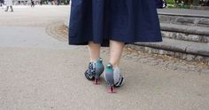 Realistic Pigeon Shoes to Make Friends With the Local Birds...