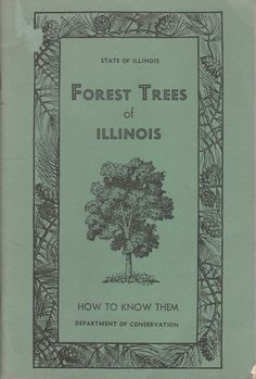 Forest Trees of Illinois How to Know Them 1955 Vintage Booklet Illustrated