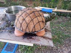 Olhem que ideia legal de uma tartaruga muito simpática para seu jardim com suculentas.