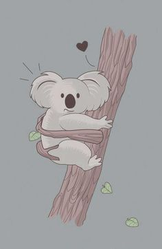 { the bucket list } • Hug a KOALA •