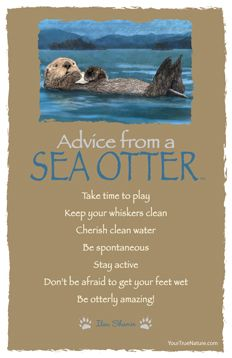 Advice from a Sea Otter Frameable Art Card – Your True Nature, Inc. Advice Quotes, Life Advice, Good Advice, Wisdom Quotes, Advice Cards, Animal Spirit Guides, Spirit Animal, Animal Medicine, Pomes