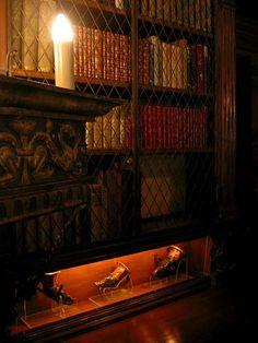 """Hearst Castle Library Bookcase in Dim Light """"Pretty Books"""""""