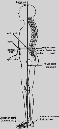 Wuji center as center of gravity