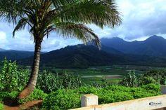 Scenic Viewpoint in Kauai, Hawaii