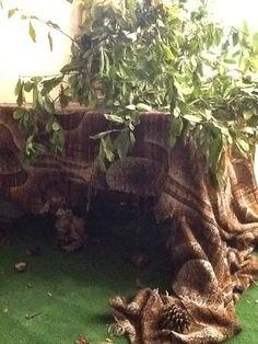 Een hutje/holletje van dieren die in het bos wonen. In een hoekje van 'het bos' in de klas. Twee tafeltjes met een oud gordijn.