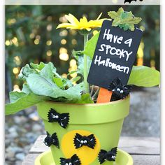 Fall Decor: Going Batty Flower Pot